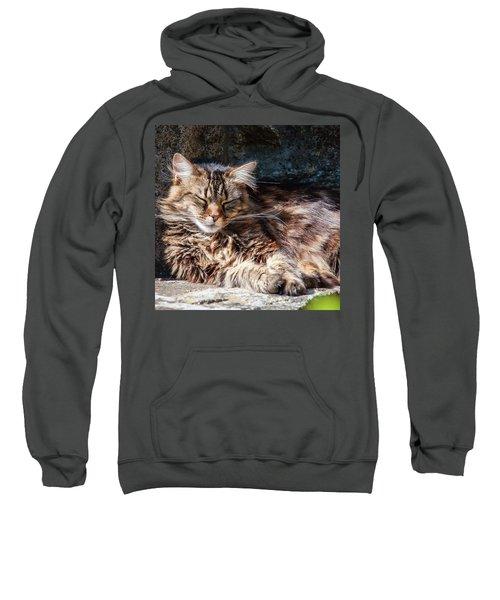 Let Me Sleep... Sweatshirt