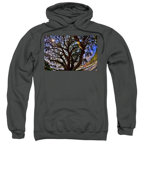 Liberty Oak Harbour Town Hilton Head Sc Sweatshirt