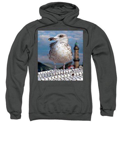 Liberty Of An Pacific Gull Sweatshirt