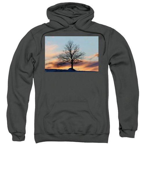 Liberty Tree Sunset Sweatshirt