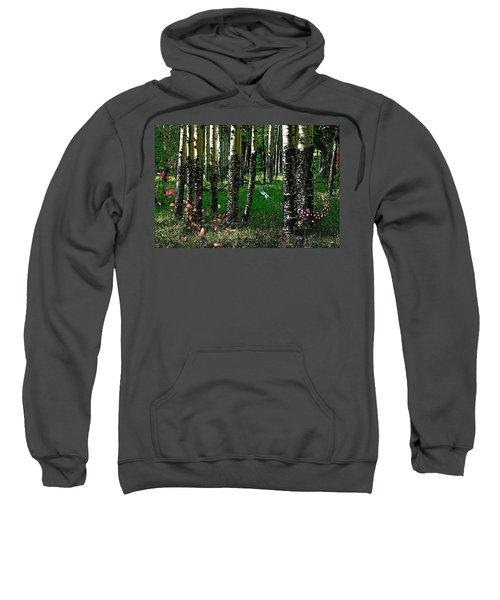 Life Among The Aspens Sweatshirt