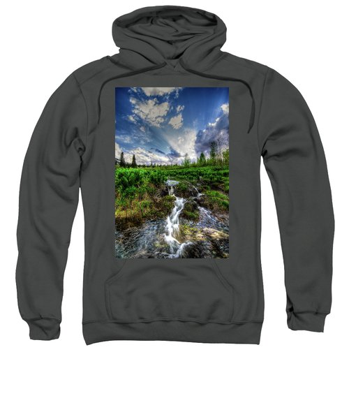 Life Giving Stream Sweatshirt