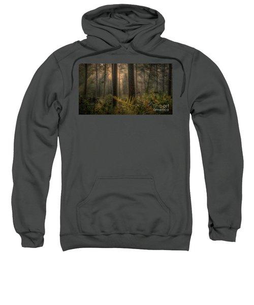 Light Bath Sweatshirt