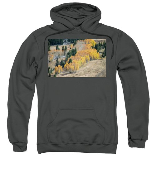 Sweatshirt featuring the photograph Light Snow On Aspen by Stephen Holst
