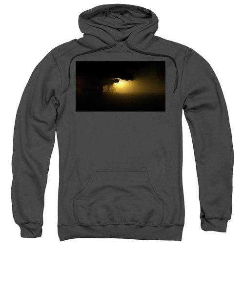 Light Through The Tree Sweatshirt