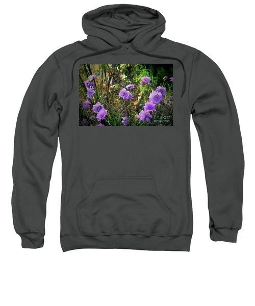 Lilac Carved Jellytot Sweatshirt