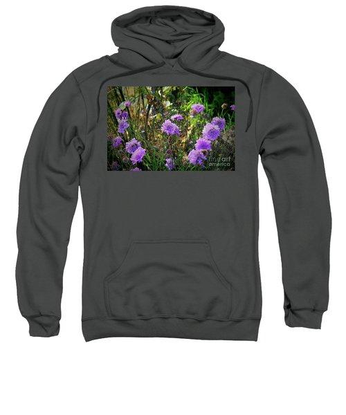 Lilac Carved Jellytot Sweatshirt