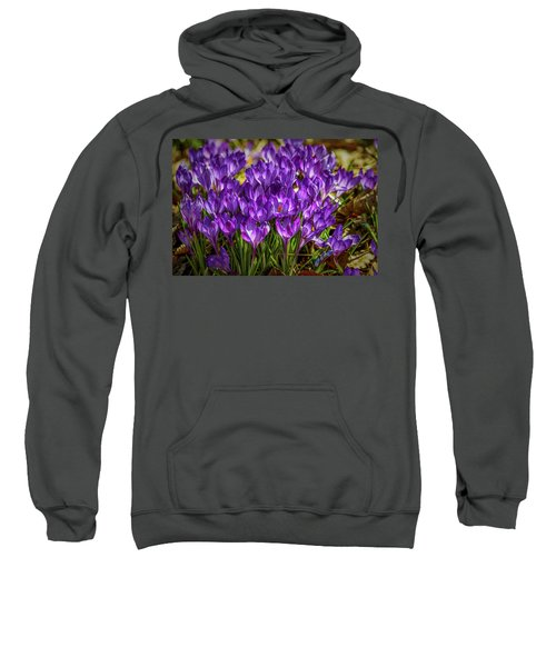 Lilac Crocus #g2 Sweatshirt