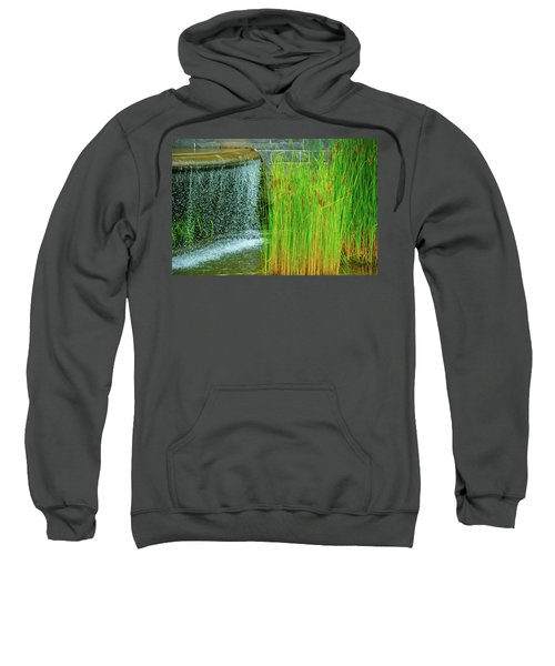 Lilly Pond In Battery Park Sweatshirt