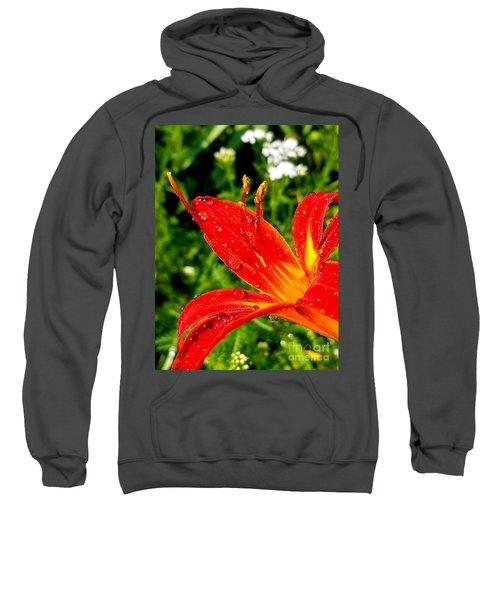 Lily And Raindrops Sweatshirt