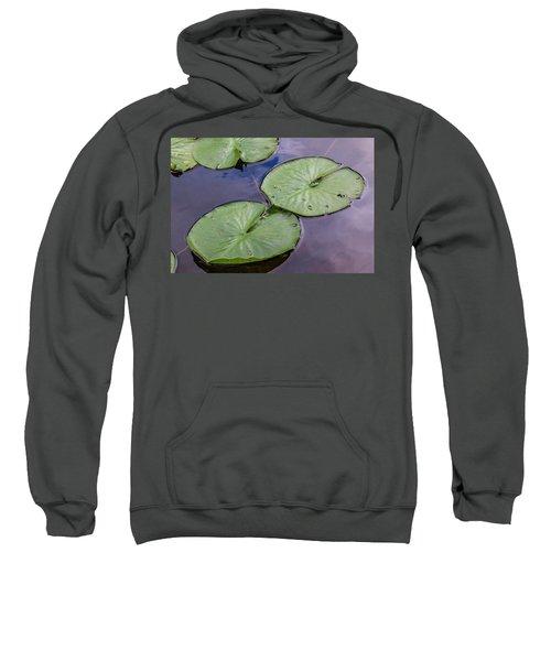 Lily Pad Reflections Sweatshirt