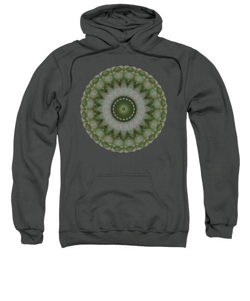 Lily Plaid Sweatshirt