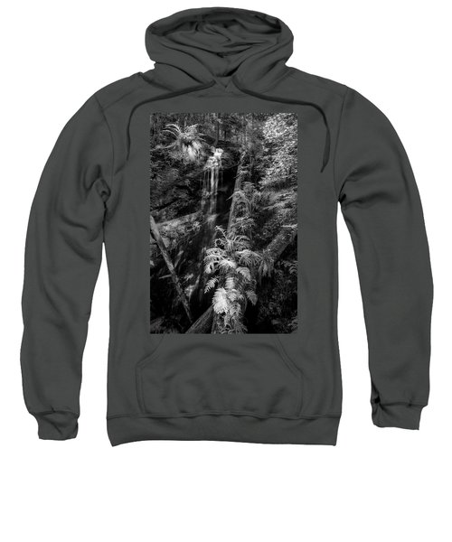 Limited And Restricted Sweatshirt