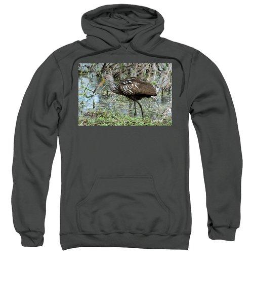 Limpkin Sweatshirt