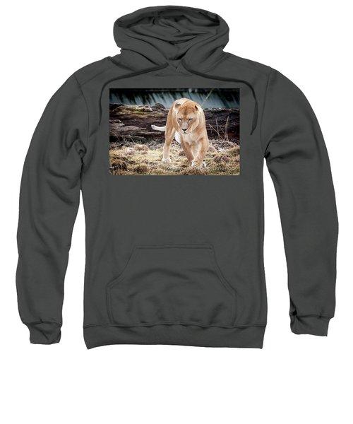 Lion Eyes Sweatshirt