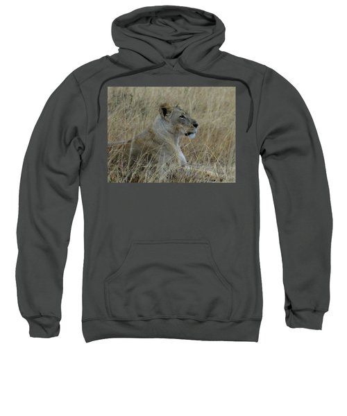 Lioness In The Grass Sweatshirt