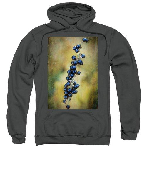 Liriope Stalk Sweatshirt