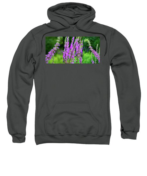 Lithe Weed - Tryptic Sweatshirt