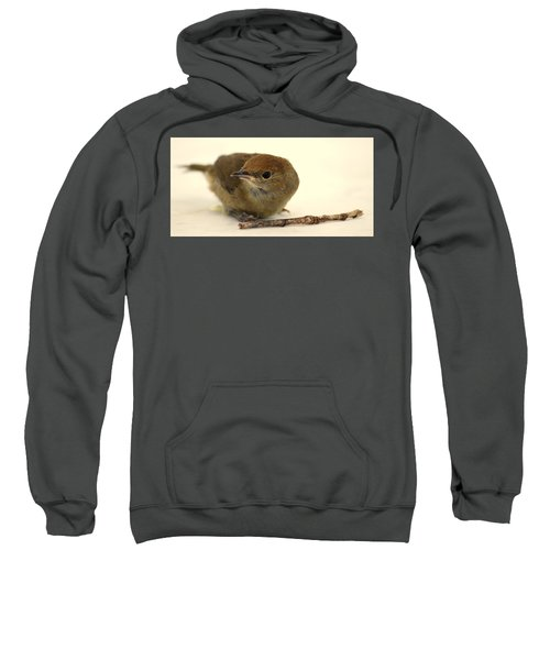 Little Bird 2 Sweatshirt