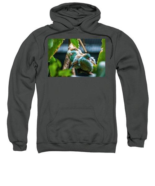 Little Birds Sweatshirt