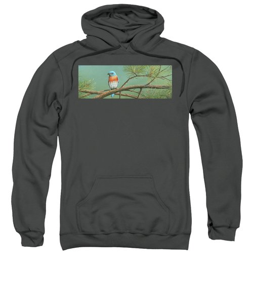 Little Boy Blue Sweatshirt