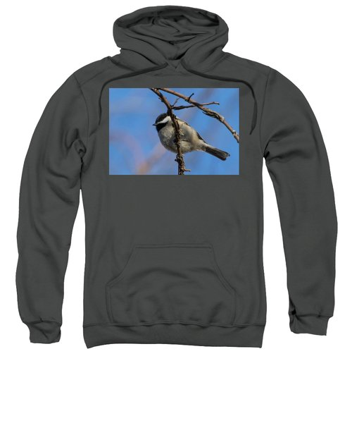 Little Chickadee Sweatshirt