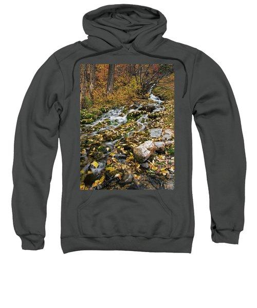 Little Creek Sweatshirt