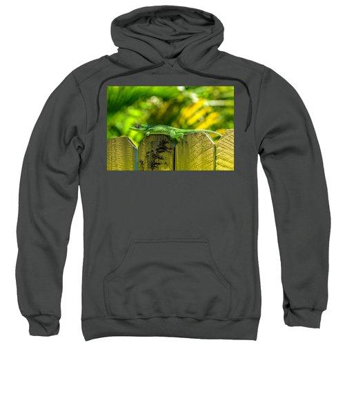 Little Green Visitor Sweatshirt