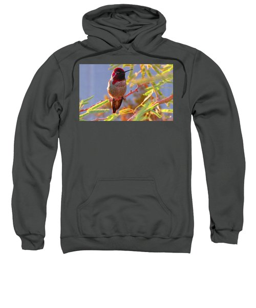 Little Jewel With Wings Second Version Sweatshirt
