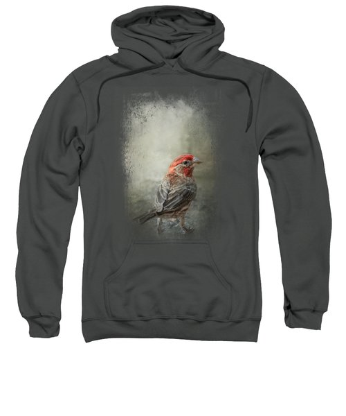 Little Red After The Storm Sweatshirt