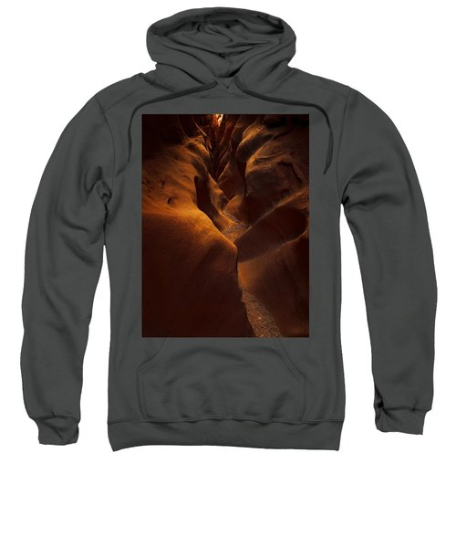 Little Wild Horse Sweatshirt