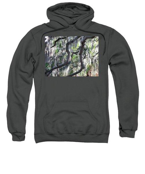 Live Oak With Spanish Moss And Palms Sweatshirt