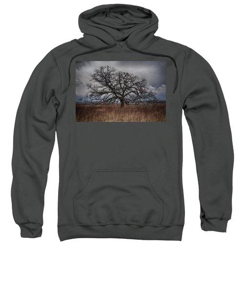 Loan Oak II Sweatshirt