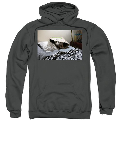 Lois's Favorite Cat Picture In The Whole Wide World Sweatshirt