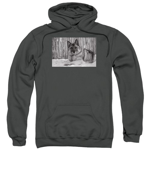 Loki By Fence Sweatshirt