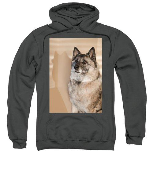 Loki Sepia Sweatshirt