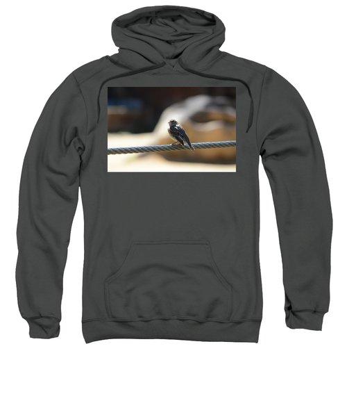 The Sentry Sweatshirt