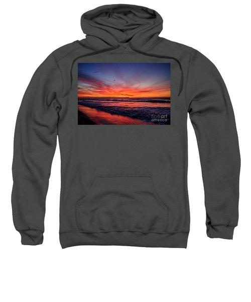 Lone Gull Sweatshirt