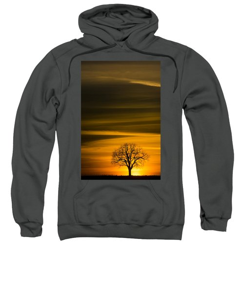 Lone Tree - 7064 Sweatshirt
