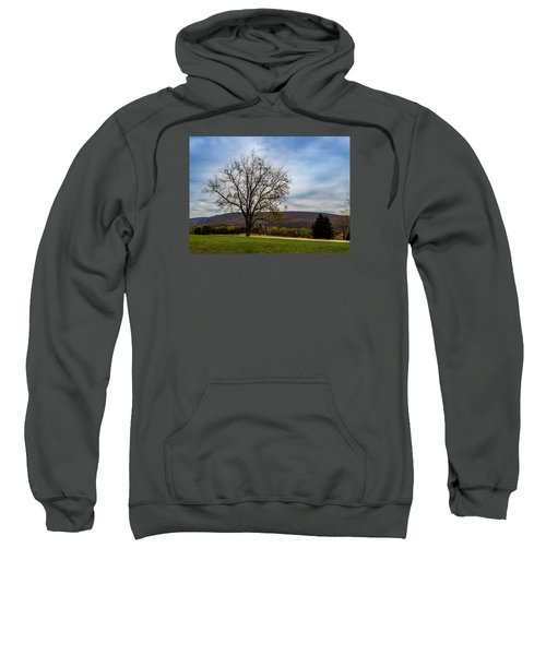 Lone Tree Sweatshirt