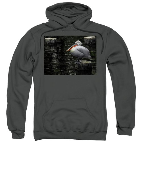 Lonely Pelican Sweatshirt
