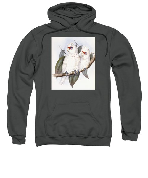 Long-billed Cockatoo Sweatshirt by John Gould