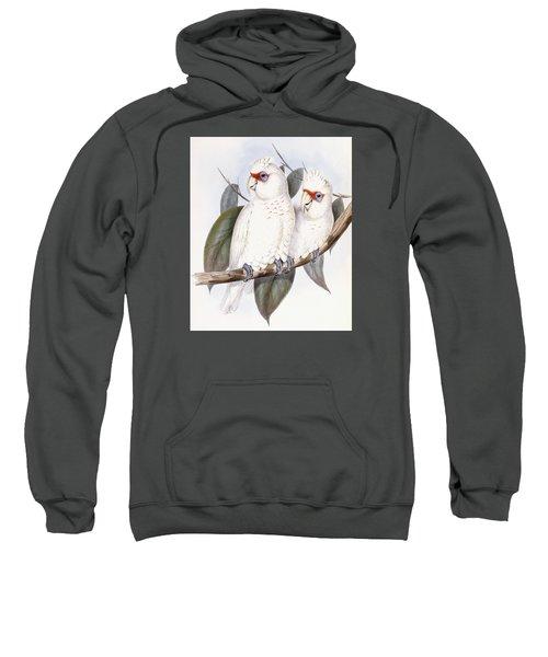 Long-billed Cockatoo Sweatshirt