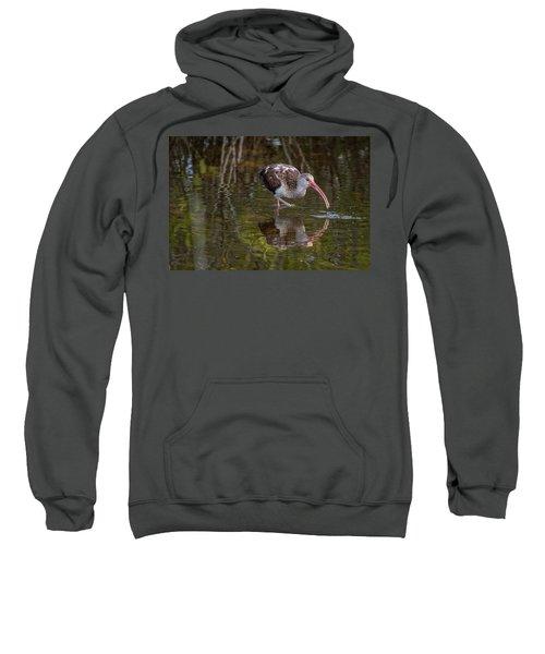 Long-billed Curlew - Male Sweatshirt