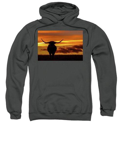 Longhorn At Sunset Sweatshirt