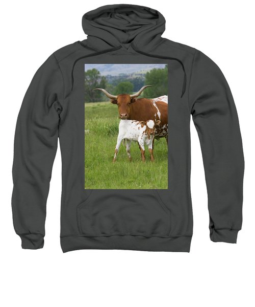Longhorns Sweatshirt