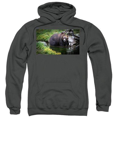 Looking For Dinner Sweatshirt