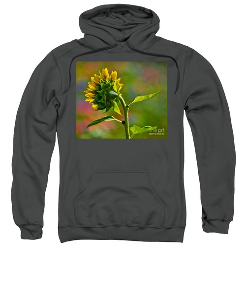 Looking For The Sun Sweatshirt
