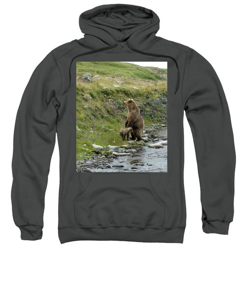 Looking Up The Bluff Sweatshirt