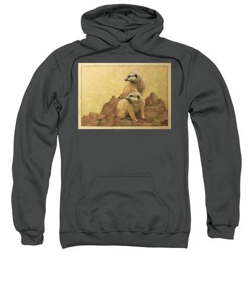 Lookouts Sweatshirt